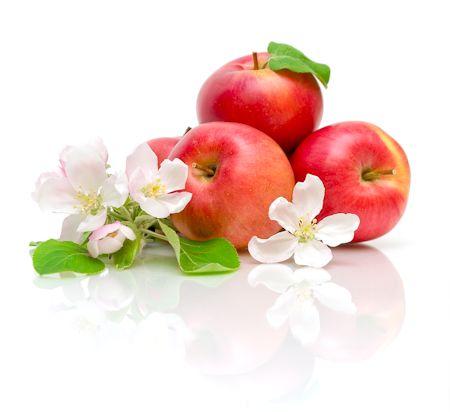 Apple Honey Flower